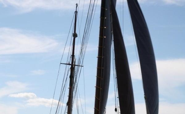 bow-sail-600x902