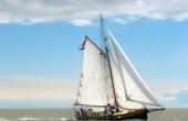 Lib-sail-600x450