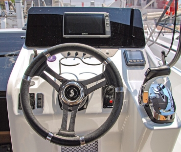 picture of the steering wheel